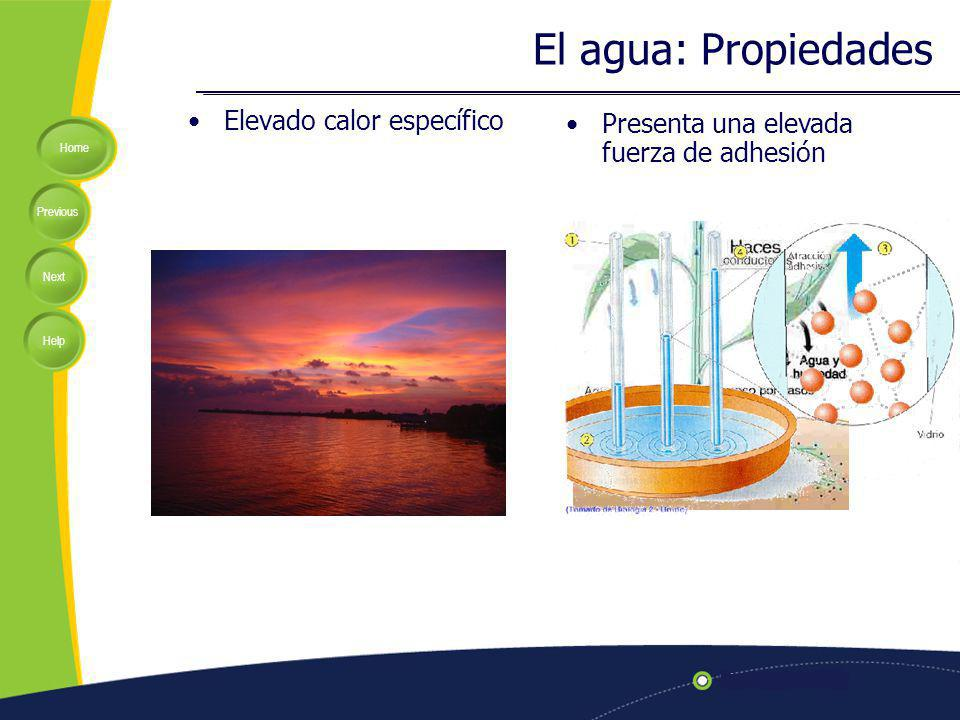 El agua: Propiedades Elevado calor específico