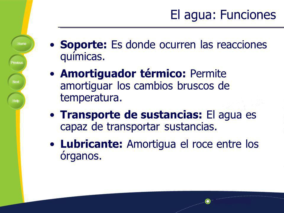El agua: Funciones Soporte: Es donde ocurren las reacciones químicas.
