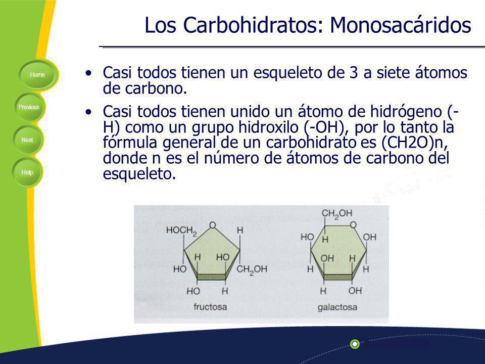 Los Carbohidratos: Monosacáridos