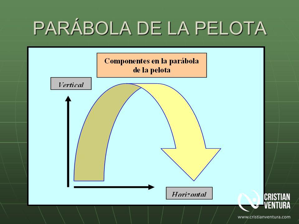 PARÁBOLA DE LA PELOTA