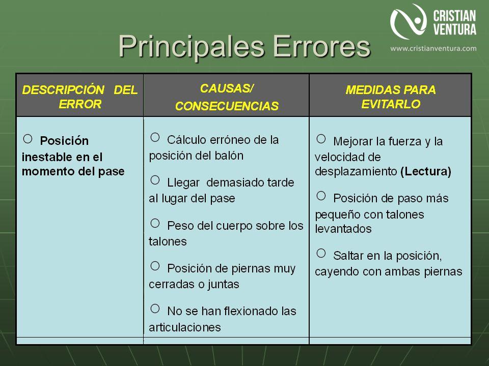 Principales Errores