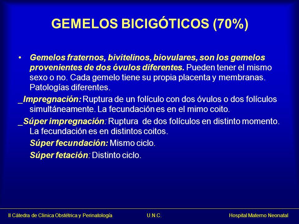 GEMELOS BICIGÓTICOS (70%)