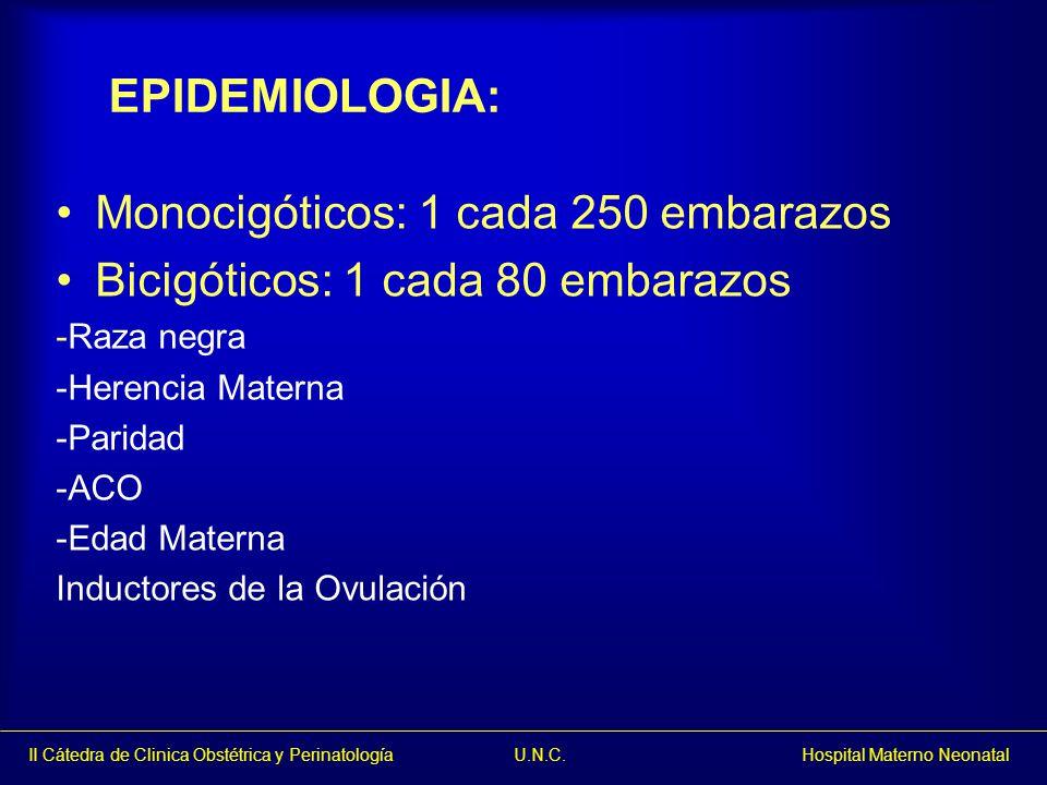 Monocigóticos: 1 cada 250 embarazos Bicigóticos: 1 cada 80 embarazos
