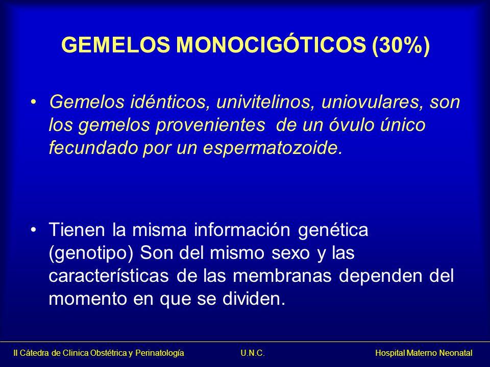 GEMELOS MONOCIGÓTICOS (30%)