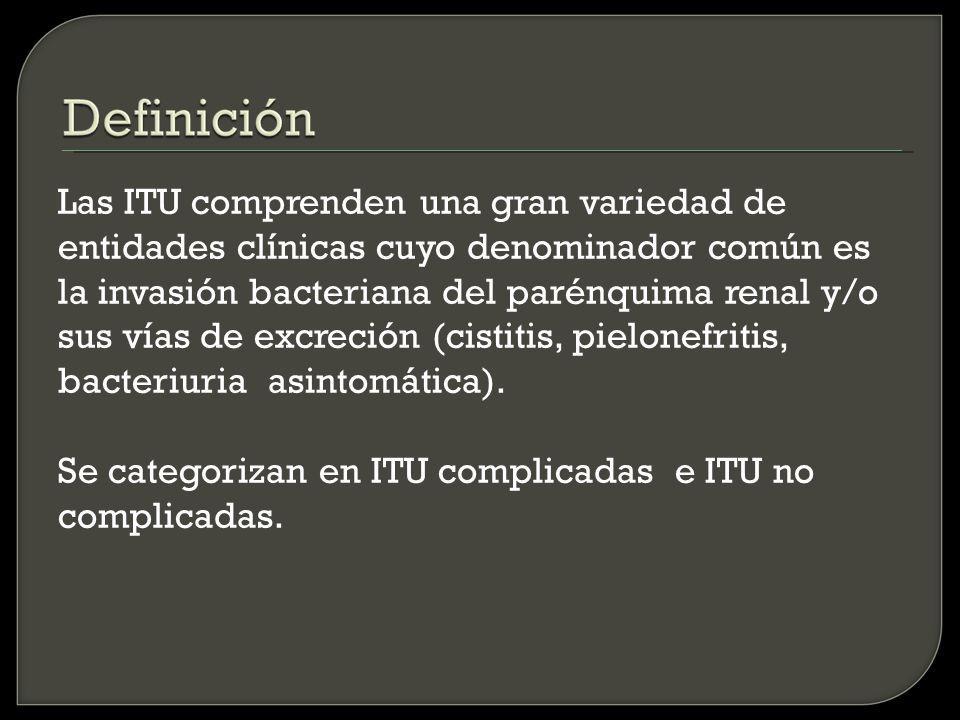Las ITU comprenden una gran variedad de