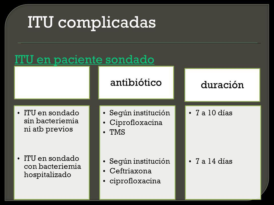 ITU complicadas ITU en paciente sondado antibiótico duración