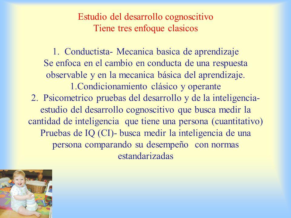 Estudio del desarrollo cognoscitivo Tiene tres enfoque clasicos 1