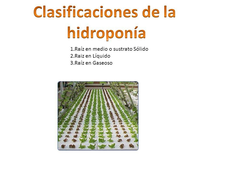 Clasificaciones de la hidroponía