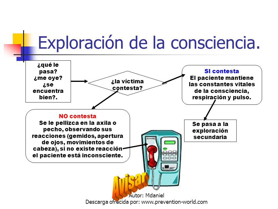 Exploración de la consciencia.