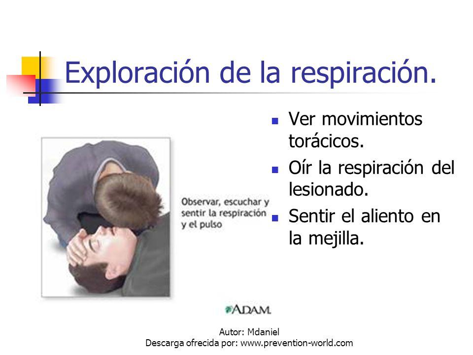 Exploración de la respiración.