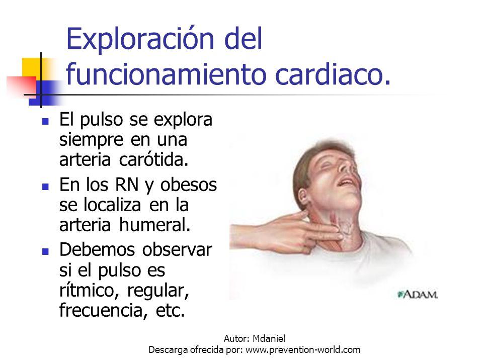 Exploración del funcionamiento cardiaco.