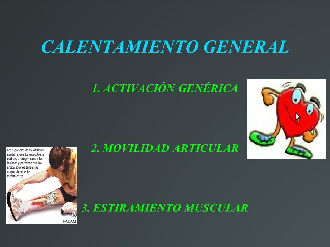 CALENTAMIENTO GENERAL 3. ESTIRAMIENTO MUSCULAR