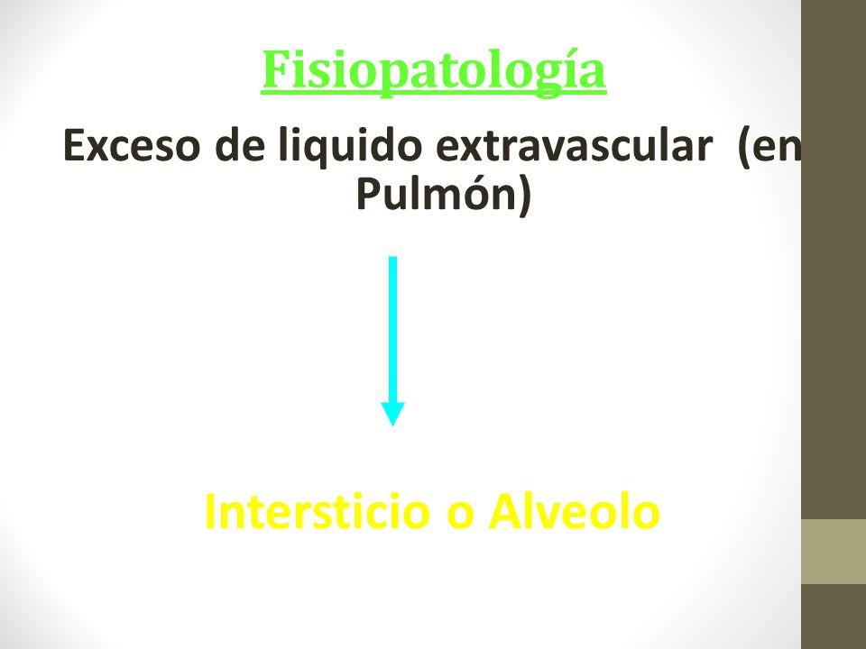 Exceso de liquido extravascular (en Pulmón)