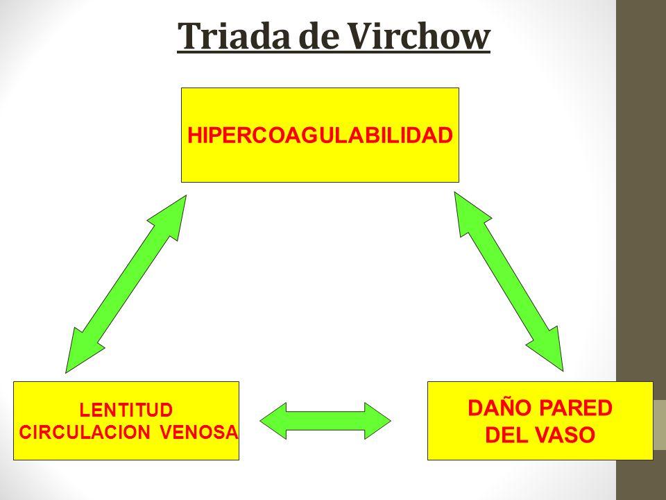 Triada de Virchow HIPERCOAGULABILIDAD DAÑO PARED DEL VASO LENTITUD