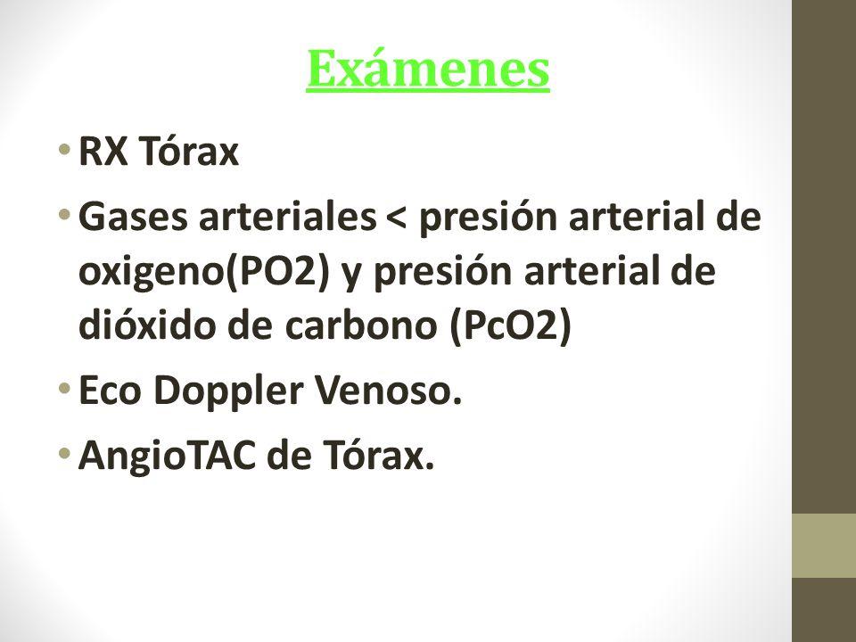 Exámenes RX Tórax. Gases arteriales < presión arterial de oxigeno(PO2) y presión arterial de dióxido de carbono (PcO2)