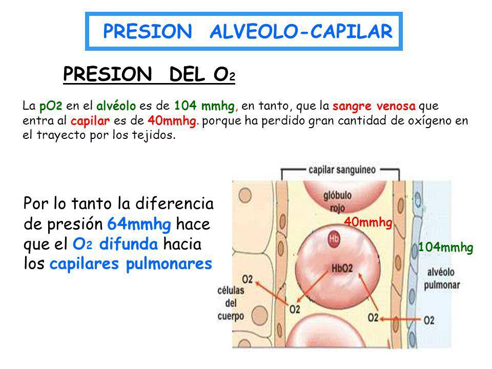 PRESION ALVEOLO-CAPILAR