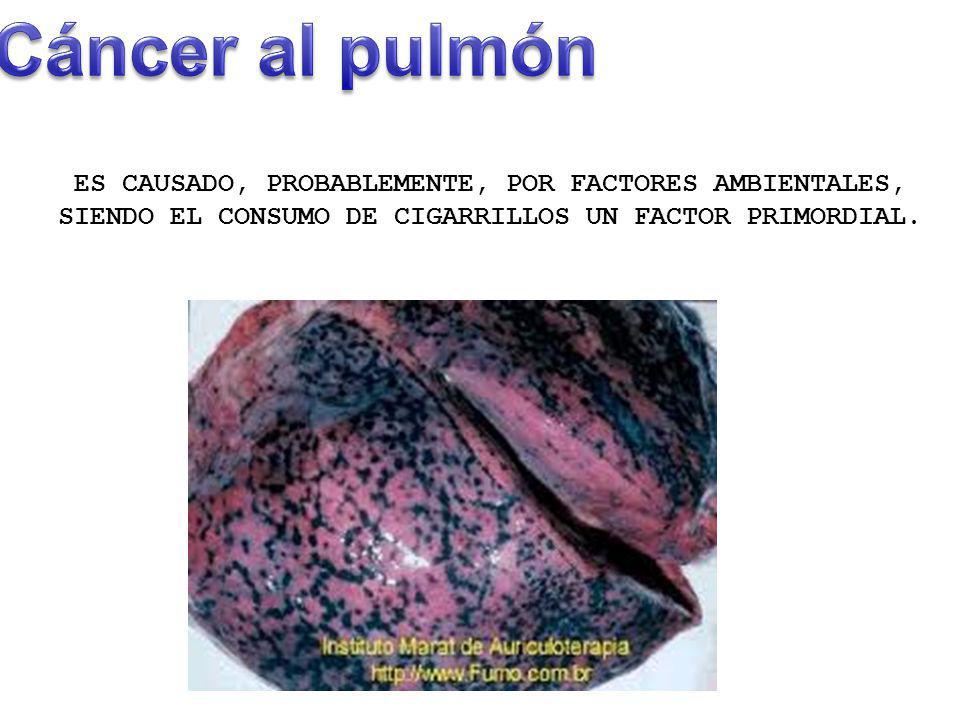 Cáncer al pulmón ES CAUSADO, PROBABLEMENTE, POR FACTORES AMBIENTALES, SIENDO EL CONSUMO DE CIGARRILLOS UN FACTOR PRIMORDIAL.