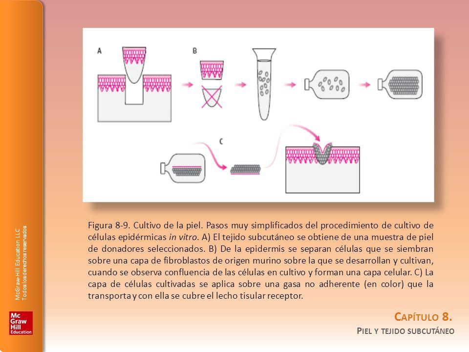 Figura 8-9. Cultivo de la piel