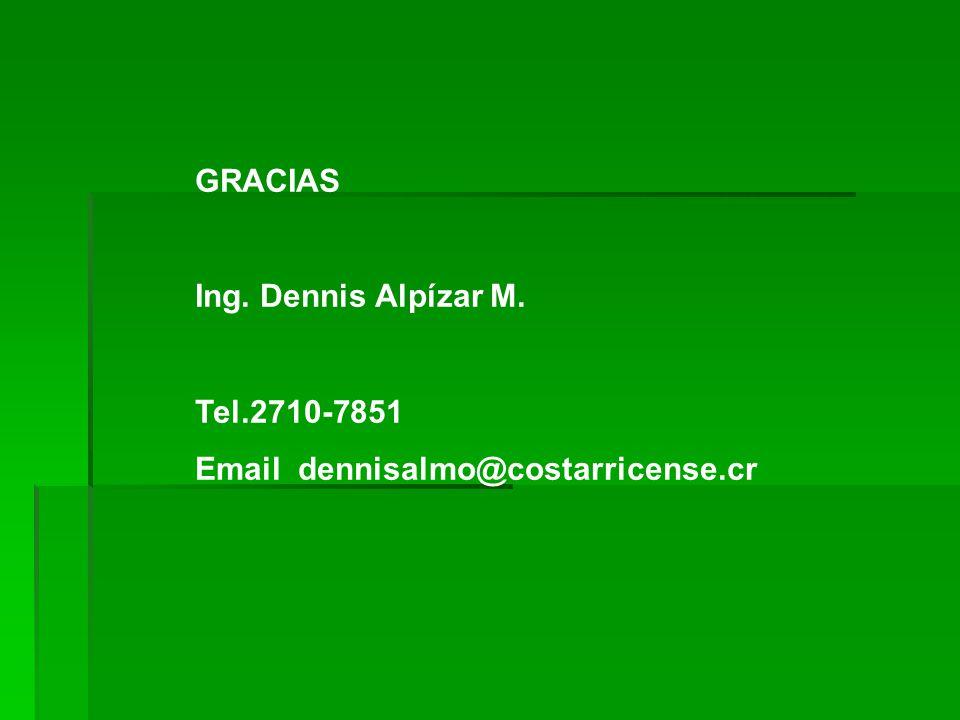 GRACIAS Ing. Dennis Alpízar M. Tel.2710-7851 Email dennisalmo@costarricense.cr