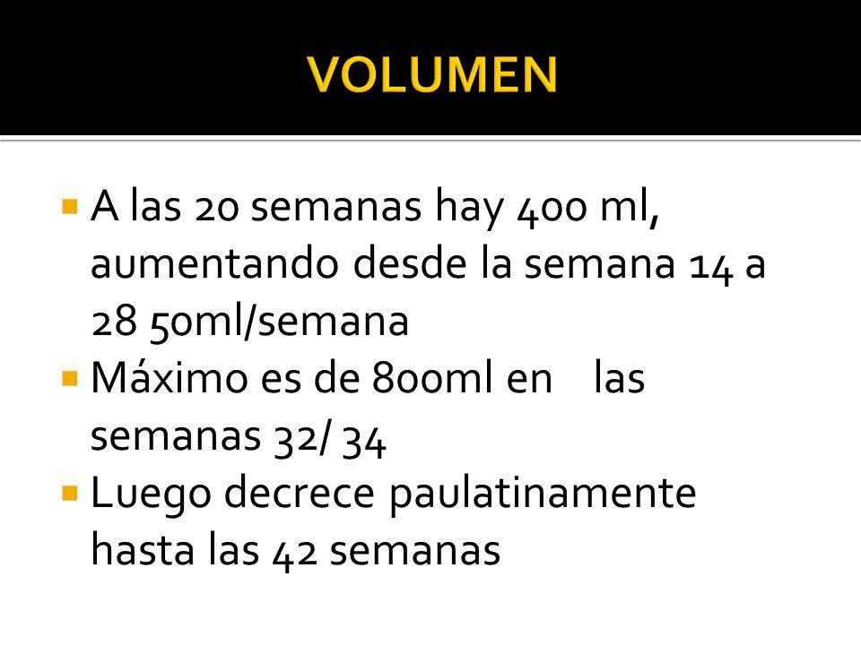 Volumen A las 20 semanas hay 400 ml, aumentando desde la semana 14 a 28 50ml/semana. Máximo es de 800ml en las semanas 32/ 34.