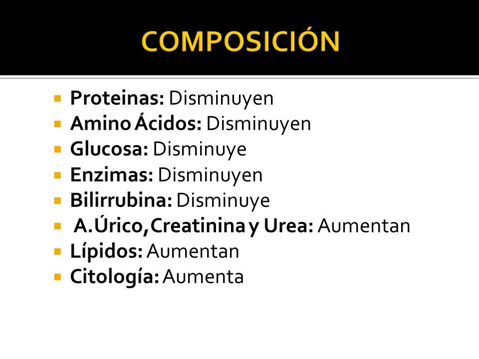 Composición Proteinas: Disminuyen Amino Ácidos: Disminuyen