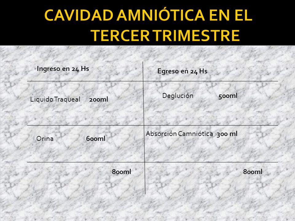 Cavidad Amniótica en el Tercer Trimestre