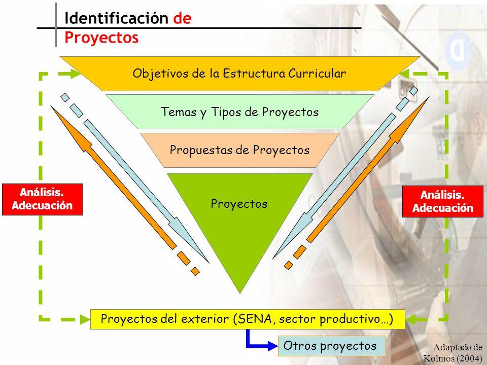 Identificación de Proyectos Objetivos de la Estructura Curricular