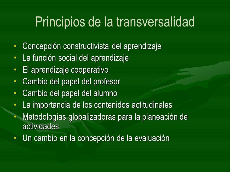 Principios de la transversalidad