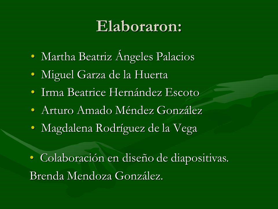 Elaboraron: Martha Beatriz Ángeles Palacios Miguel Garza de la Huerta