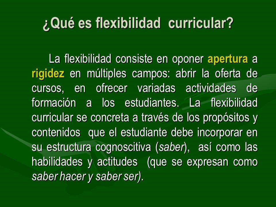 ¿Qué es flexibilidad curricular