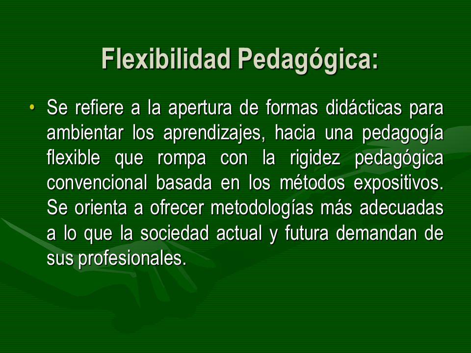 Flexibilidad Pedagógica: