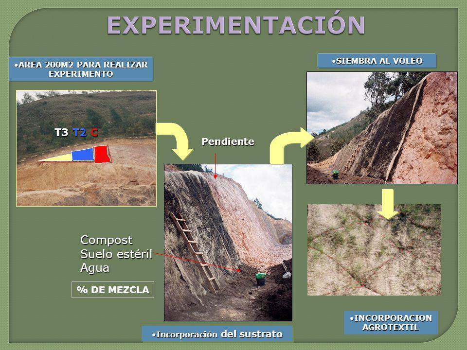 EXPERIMENTACIÓN Compost Suelo estéril Agua T3 T2 C Pendiente