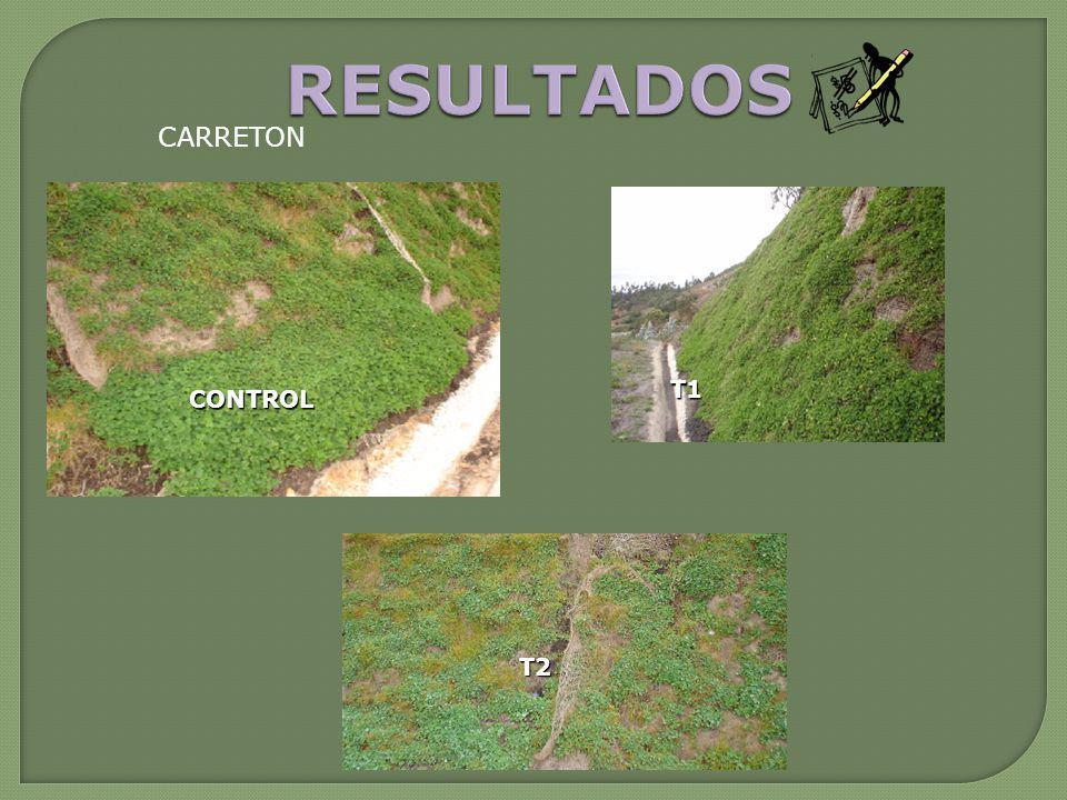 RESULTADOS CARRETON T1 CONTROL T2