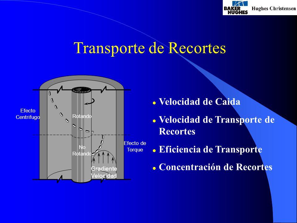 Transporte de Recortes