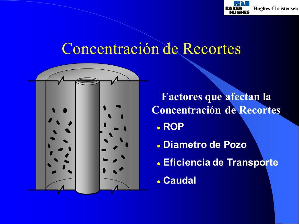 Factores que afectan la Concentración de Recortes
