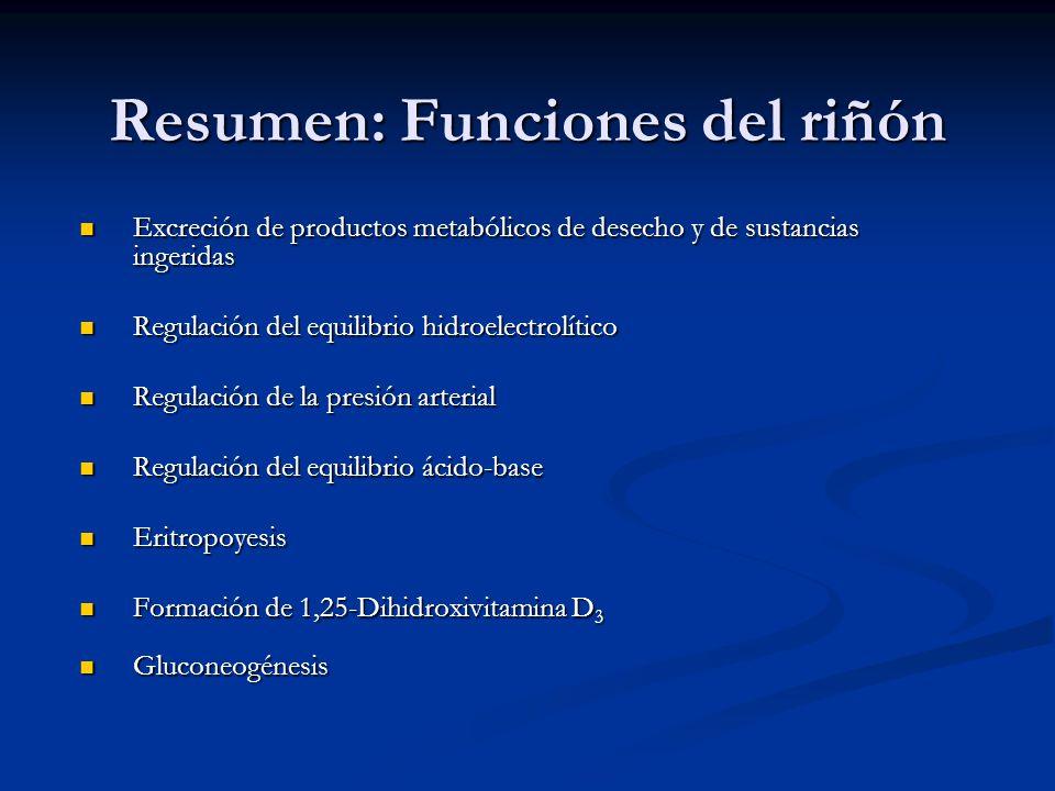 Resumen: Funciones del riñón