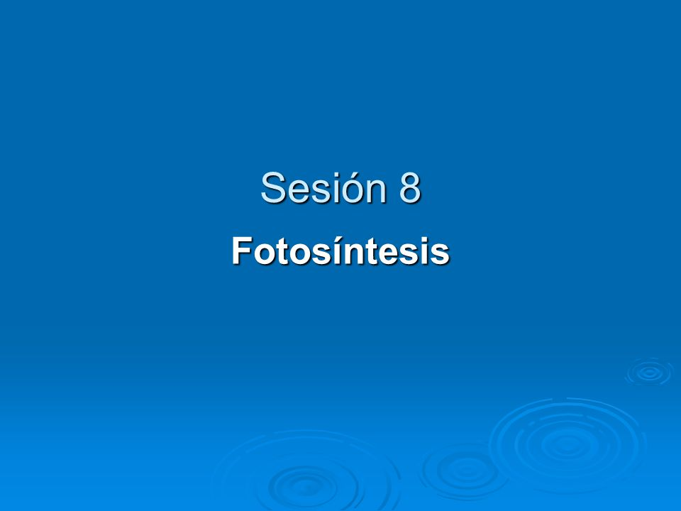 Sesión 8 Fotosíntesis