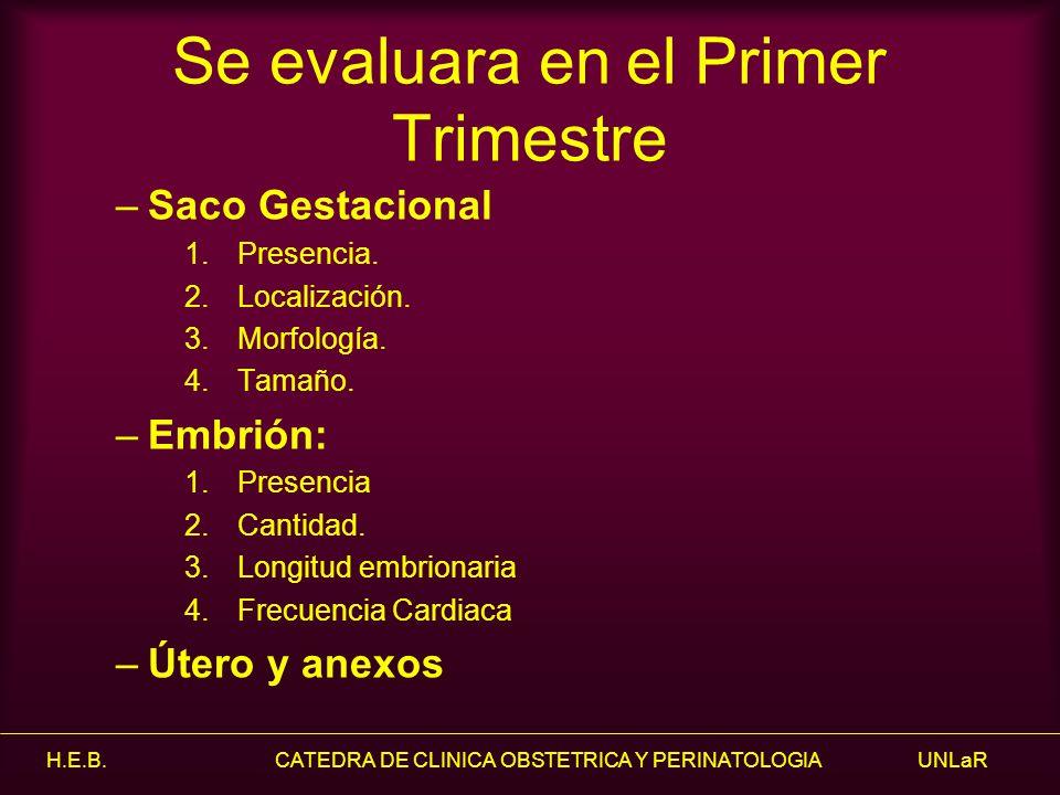 Se evaluara en el Primer Trimestre