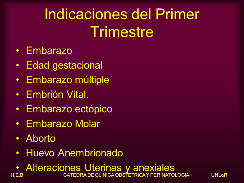 Indicaciones del Primer Trimestre