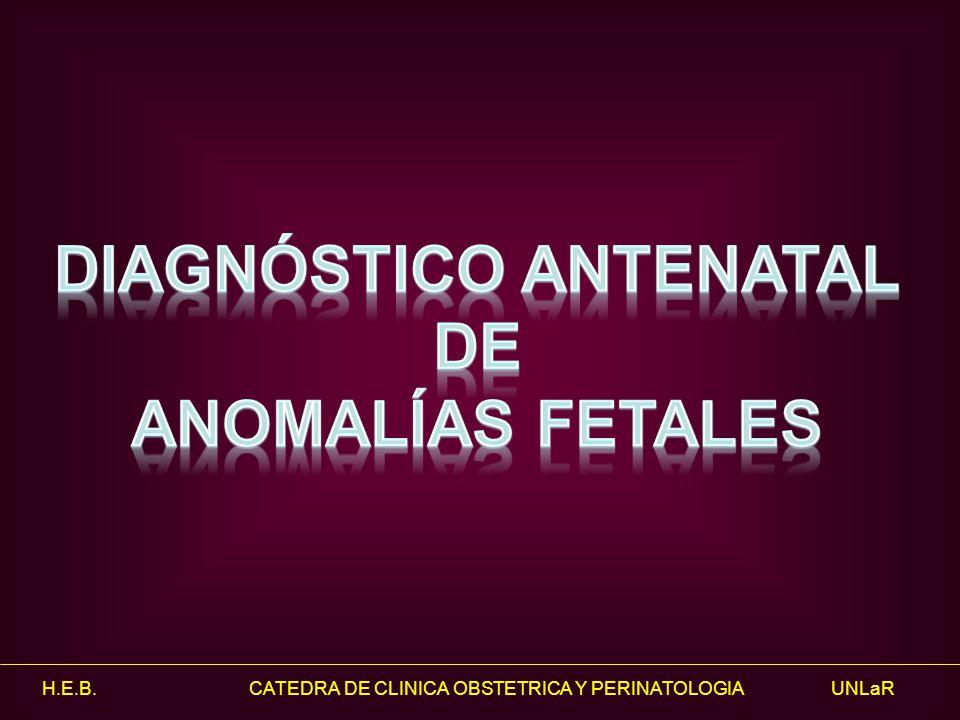 Diagnóstico Antenatal