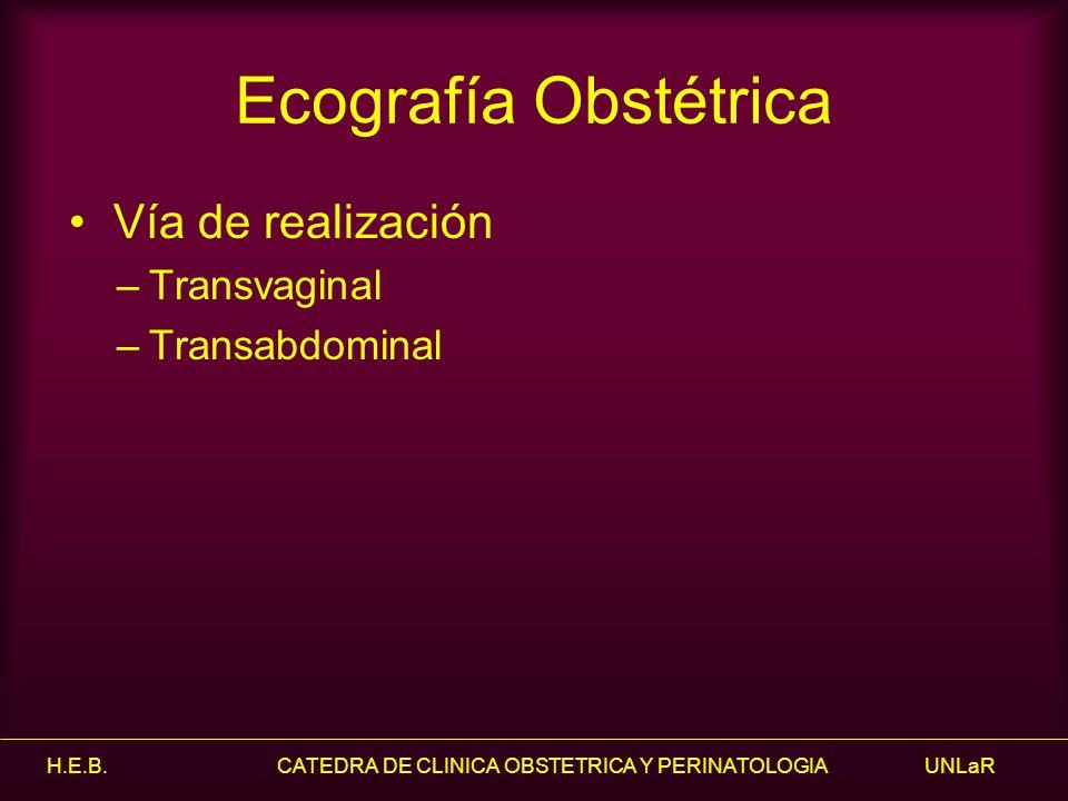Ecografía Obstétrica Vía de realización Transvaginal Transabdominal