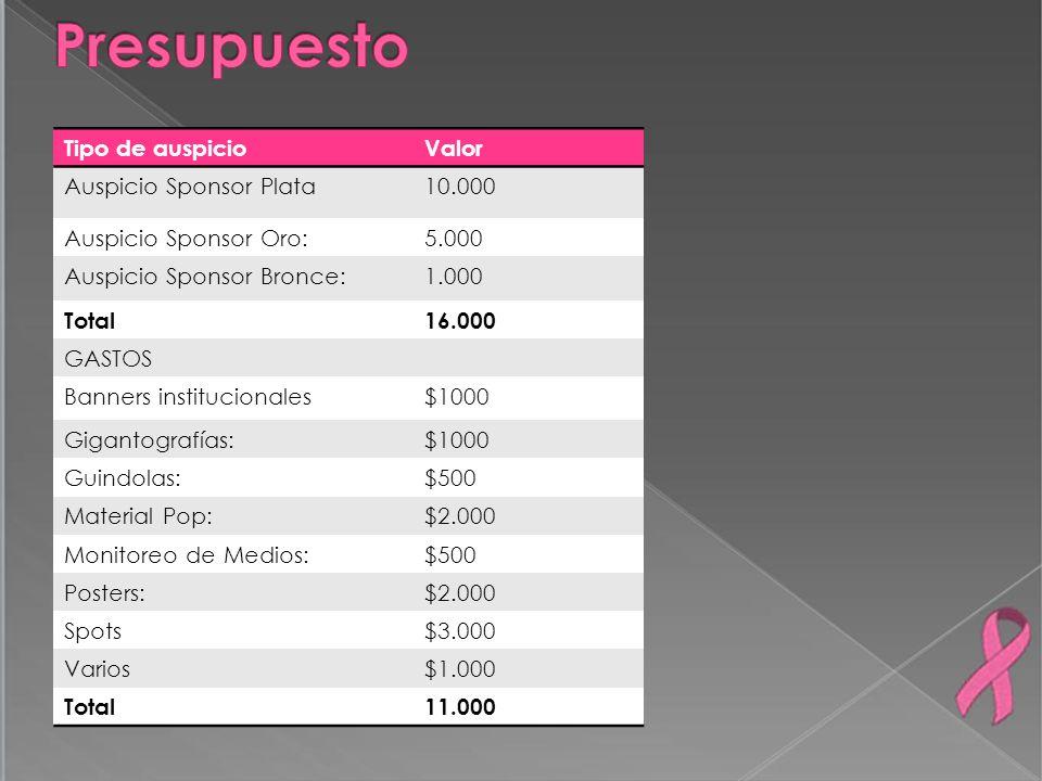 Presupuesto Tipo de auspicio Valor Auspicio Sponsor Plata 10.000