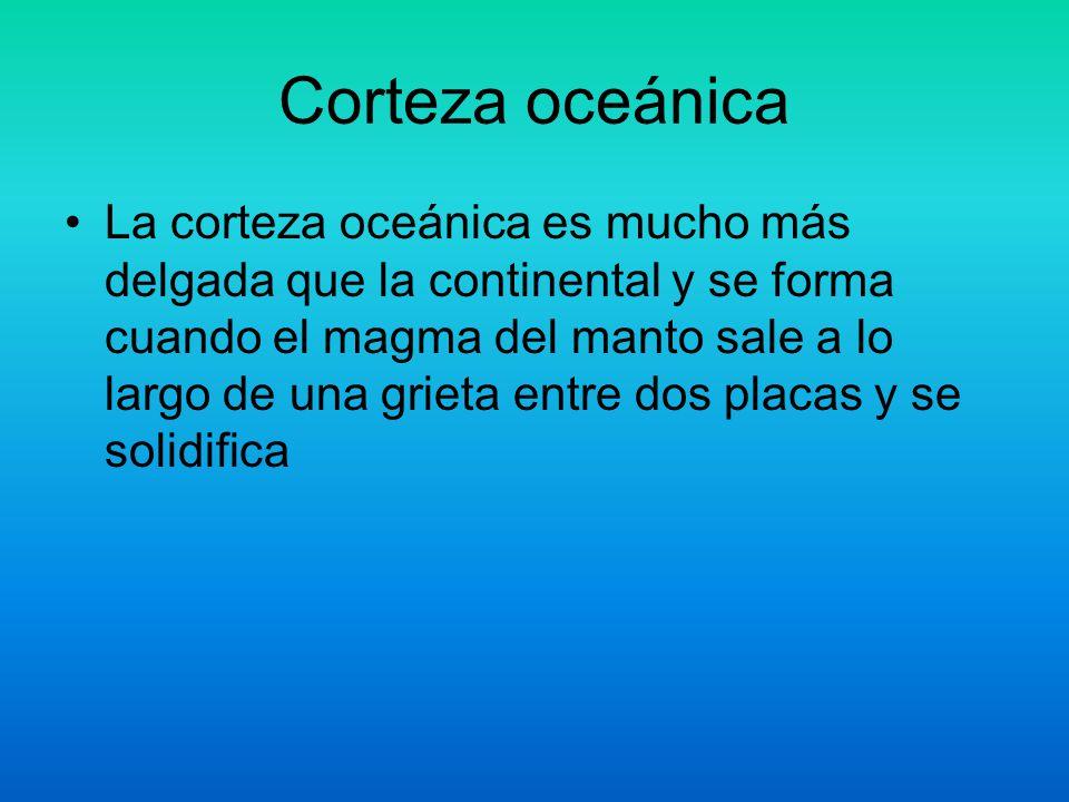 Corteza oceánica