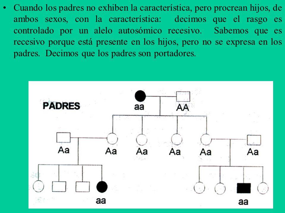 Cuando los padres no exhiben la característica, pero procrean hijos, de ambos sexos, con la característica: decimos que el rasgo es controlado por un alelo autosómico recesivo.