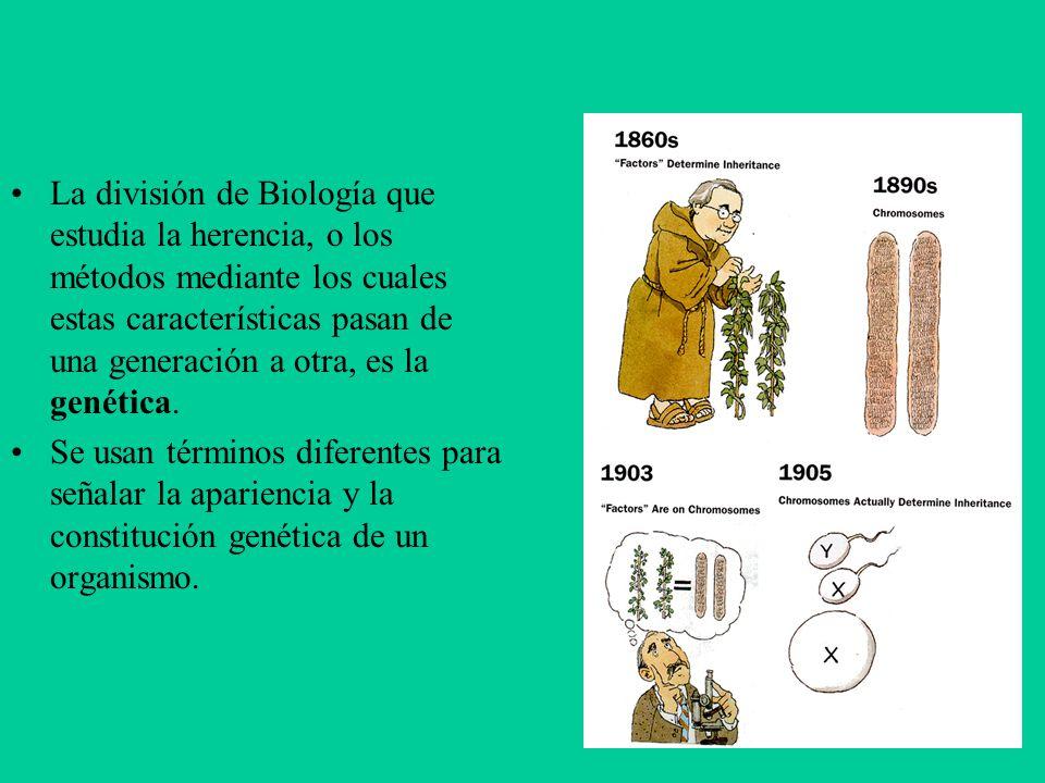 La división de Biología que estudia la herencia, o los métodos mediante los cuales estas características pasan de una generación a otra, es la genética.