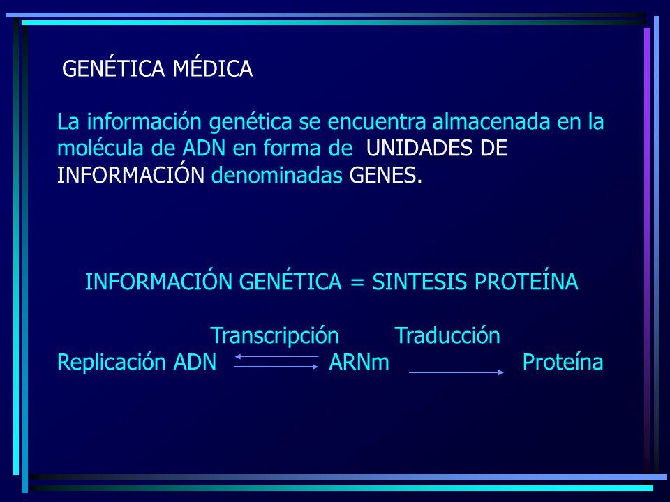 GENÉTICA MÉDICA La información genética se encuentra almacenada en la molécula de ADN en forma de UNIDADES DE INFORMACIÓN denominadas GENES.