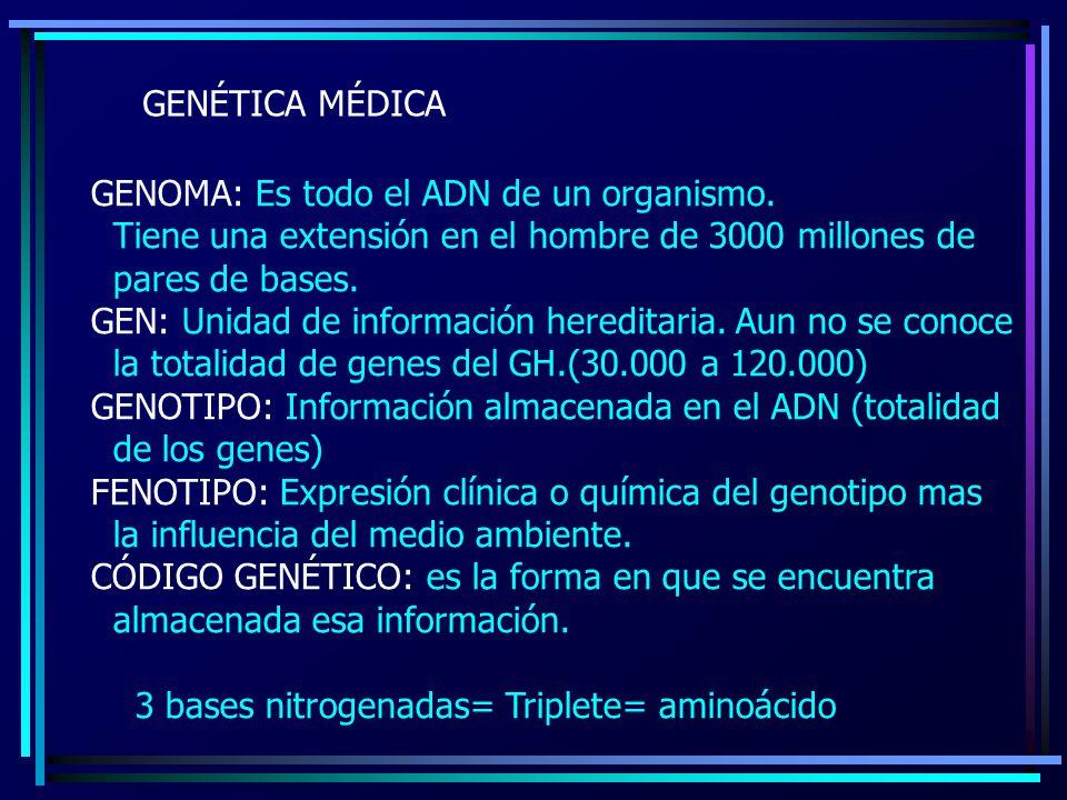 GENÉTICA MÉDICA GENOMA: Es todo el ADN de un organismo. Tiene una extensión en el hombre de 3000 millones de.