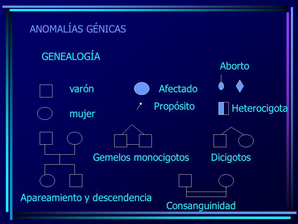 ANOMALÍAS GÉNICAS GENEALOGÍA. Aborto. varón. Afectado. Propósito. Heterocigota. mujer. Gemelos monocigotos Dicigotos.