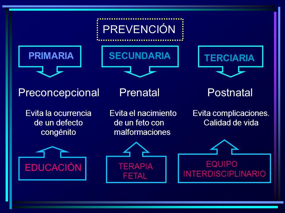 PREVENCIÓN Preconcepcional Prenatal Postnatal PRIMARIA SECUNDARIA
