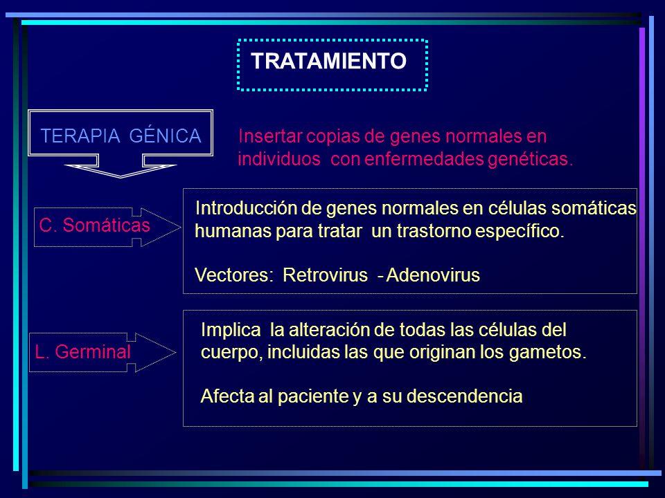 TRATAMIENTO TERAPIA GÉNICA Insertar copias de genes normales en